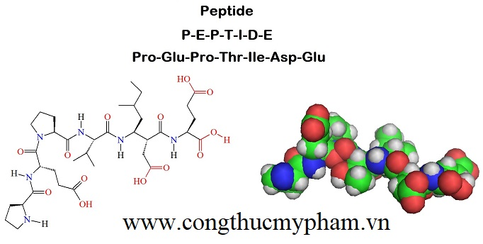 peptide-gia-si-tr-n-toan-quoc-1.jpg